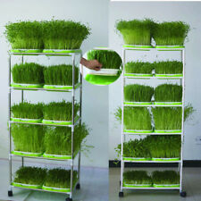 Seedling Raising Bed Greenhouse Small Bean Hydroponic Tray Sprout Seedling tray