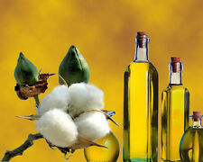 Cottonseed Oil - USP - multiple sizes