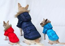 Padded Dog Coat with Hoodie - Winter Puffer Jacket *Many Colours & Sizes*