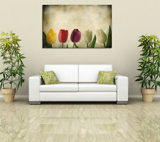 Abstract floral art 5 colorful tulips PHOTO WALL ART PICTURE CANVAS PRINT DECOR