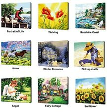 DIY Paint By Numbers 40X50CM 16X20'' kit Acrylic Painting Home Décor PBN G06