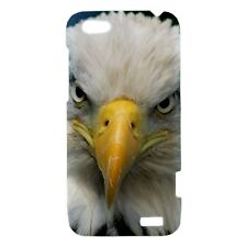 Bald Eagle Bird  - Hard Case for HTC Cell (30 Models) -OP4081