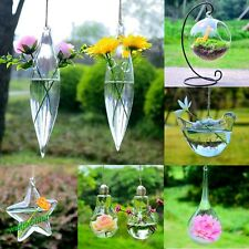 Hot Hanging Glass Plants Flower Vase Hydroponic Container Party Wedding Decor