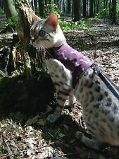 Butterfly Cat Jackets - Walking Harness Jacket Various Designs