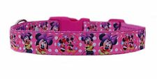 "CERISE PINK Disney  ' MINNIE MOUSE' medium large dog puppy collar 1"" cushioned"