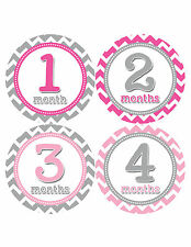 Baby Girl Monthly Baby Stickers 12 Month Milestone Birthday Sticker Photo #353