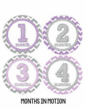 Baby Girl Monthly Baby Stickers 12 Month Milestone Birthday Sticker Photo #120