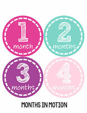 Baby Girl Monthly Photo Shirt Stickers 12 Month Milestone Sticker Newborn #144