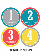 Baby Boy Monthly Milestone Birthday Stickers 12 Month Photo Shirt Sticker #169