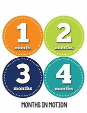 Baby Boy Monthly Milestone Birthday Stickers 12 Month Sticker Photo Prop #059
