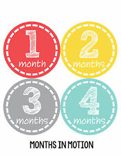 Baby Boy Monthly Milestone Birthday Stickers 12 Month Sticker Photo Prop #168