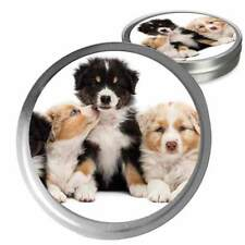 AUSTRALIAN SHEPHERD COMBOS FOR DRY NOSES, ROUGH PAWS, SKIN IRRITATIONS & MORE
