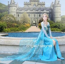 3800 Movies Frozen Snow Queen Elsa Cosplay Costume Dress tailor made kid adult