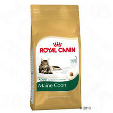 Cat Food Royal Canin Maine Coon Adult - Best prices!