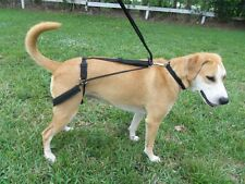 Horgan Harness NO PULL NO CHOKE  back leg Dog Harness- Orthapedic Vet Designed-