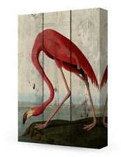 DecorArts-Canvas Prints Wall Art American Flamingo on Vintage wooden background