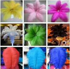 10pcs Wedding Birthday Party Natural Ostrich Feathers 12-14 inch/30-35cm Bulk US