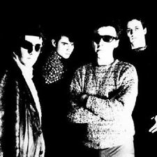TELEVISION PERSONALITIES - PAINTED WORD NEW VINYL