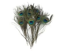 New 10-12inch Peacock Feathers Tail Natural Eyes For Bouquet Party DIY Decor