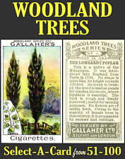 Gallaher WOODLAND TREES - Select-A-Card from 51-100