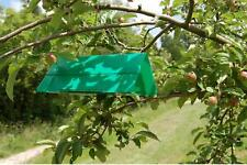 Agralan Codling Moth Trap Pheromone Easy To Use - Refills Also Available