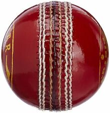 T20 Match Quality Leather Cricket Ball Senior 5.5oz Professional 20 Ov Practice