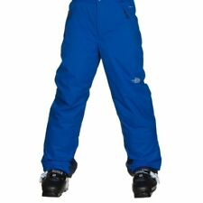 The North Face Boys' Freedom Pants (Size L & XL) Snow Pants - Jake Blue