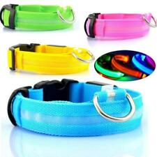 Dog Collar Led Light Safety Night Adjustable Flashing For Small Pets Accessories