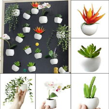 Set Fridge Magnets Succulent Cactus Plant Magnet Button Sticker Decor