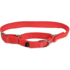 PREMIER MARTINGALE DOG COLLAR - NO SLIP TRAINING CHOKE Pups Choose Size & Color