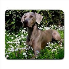 Weimaraner Dog - Mousepads or Coasters (8 Styles) -BB5049