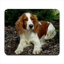 Welsh Springer Spaniel Dog - Mousepads or Coasters (8 Styles) -Bb5052
