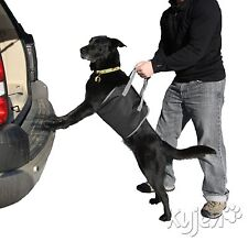 """Up & Out"" Lift Harness Dog Pet Lifting Aid Alternative to Ramp Safe Easy Car"