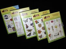 NEW ~Amazing Designs~ Embroidery Designs Multi-Format CD's