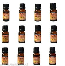 Aromatherapy Choice of Top 12 Essential Oils Lavender Lemon Ylang Ylang Tea Tree