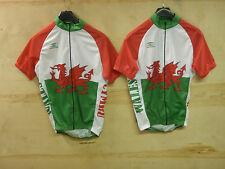 WELSH/WALES SHORT SLEEVE CYCLING JERSEY SIZES M/L/XL/XXL/3XL UK P&P FREE