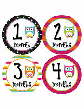 Baby Girl Monthly Baby Stickers 12 Month Milestone Birthday Sticker Photo #342