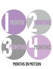 Baby Girl Monthly Stickers Milestone Month Sticker Months In Motion Newborn 296