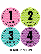 Baby Girl Monthly Baby Stickers 12 Month Milestone Birthday Sticker Photo #260