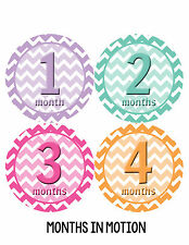 Baby Girl Monthly Photo Shirt Stickers 12 Month Milestone Sticker Newborn #280