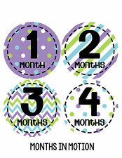 Baby Girl Monthly Photo Shirt Stickers 12 Month Milestone Sticker Newborn #274