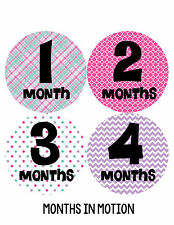 Baby Girl Monthly Photo Shirt Stickers 12 Month Milestone Sticker Newborn #204