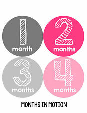 Baby Girl Monthly Photo Shirt Stickers 12 Month Milestone Sticker Newborn #105