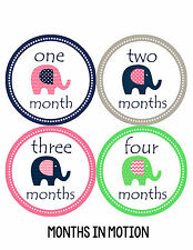 Baby Girl Monthly Photo Shirt Stickers 12 Month Milestone Sticker Newborn #095