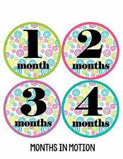 Baby Girl Monthly Photo Shirt Stickers 12 Month Milestone Sticker Newborn #032