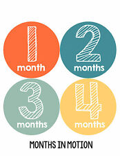Baby Boy Monthly Milestone Birthday Stickers 12 Month Photo Shirt Sticker #107