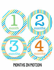 Baby Boy Monthly Milestone Birthday Stickers 12 Month Sticker Photo Prop #193