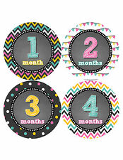 Baby Girl Monthly Baby Stickers Style #427