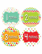 Baby Girl Monthly Baby Stickers Style #405