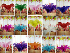 Wholesale 10-100pcs High Quality Natural OSTRICH FEATHERS 6-14 inch/15-35 cm